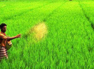 ರೈತರ ಹೆಸರಿನಲ್ಲಿ ನಕಲಿ ಬಿಲ್: ವಂಚಕ ಜಾಲ ಬೇಧಿಸಿದ ಕೃಷಿ ಇಲಾಖೆ
